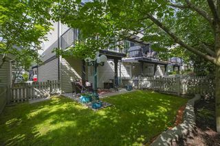 """Photo 29: 61 6747 203 Street in Langley: Willoughby Heights Townhouse for sale in """"SAGEBROOK"""" : MLS®# R2454928"""