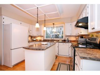 Photo 11: 13568 N 60A Avenue in Surrey: Panorama Ridge House for sale : MLS®# F1432245