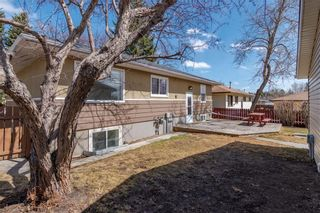 Photo 28: 37 CADOGAN Road NW in Calgary: Cambrian Heights Detached for sale : MLS®# C4294170