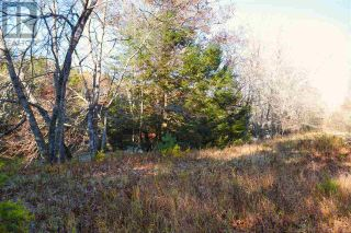 Photo 21: Lot 10 Highway 10 in Cookville: Vacant Land for sale : MLS®# 202022759