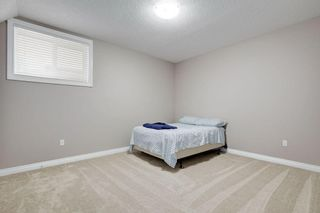 Photo 32: 8233 SADDLEBROOK Drive NE in Calgary: Saddle Ridge Detached for sale : MLS®# A1082147
