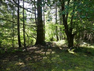 Photo 15: 7910 Tugwell Rd in SOOKE: Sk Otter Point House for sale (Sooke)  : MLS®# 822627