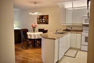 Photo 2: 103 6703 172 Street in Edmonton: Zone 20 Condo for sale : MLS®# E4255592