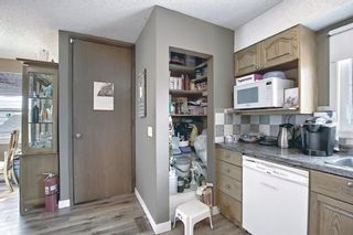 Photo 11: 367 Maitland Crescent NE in Calgary: Marlborough Park Detached for sale : MLS®# A1093291