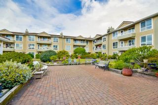 Photo 5: 316 15875 MARINE DRIVE: White Rock Condo for sale (South Surrey White Rock)  : MLS®# R2080349