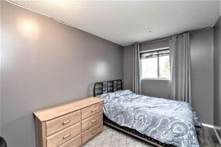 Photo 14:  in Edmonton: Zone 28 House for sale : MLS®# E4241214