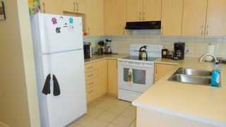 """Photo 4: 227 40437 TANTALUS Road in Squamish: Garibaldi Estates Condo for sale in """"Spectacle"""" : MLS®# R2114587"""