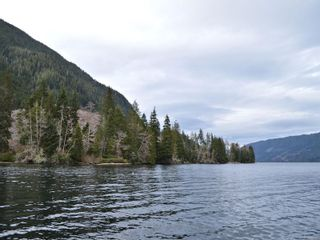 Photo 9: LT 1 Neroutsos Inlet in : NI Port Hardy Land for sale (North Island)  : MLS®# 859845