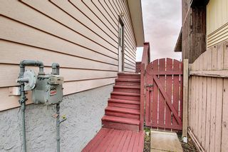 Photo 48: 155 Templevale Road NE in Calgary: Temple Detached for sale : MLS®# A1119165