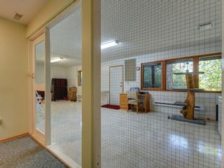 Photo 23: 4970 Prospect Lake Rd in : SW Prospect Lake House for sale (Saanich West)  : MLS®# 854469