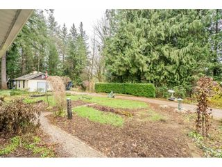"""Photo 32: 24322 55 Avenue in Langley: Salmon River House for sale in """"Salmon River"""" : MLS®# R2522391"""