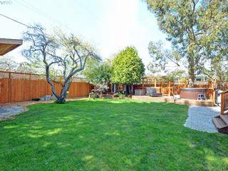 Photo 19: 2490 Dryfe St in VICTORIA: OB Henderson House for sale (Oak Bay)  : MLS®# 784390