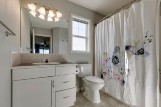 Photo 20: 227 Silver Springs Way NW: Airdrie Detached for sale : MLS®# A1083997