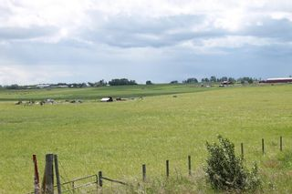 Photo 7: 11 Rge Rd: Rural Mountain View County Land for sale : MLS®# C4205846