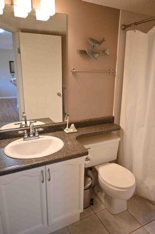 Photo 15: 241 10636 120 Street in Edmonton: Zone 08 Condo for sale : MLS®# E4265580