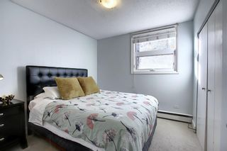 Photo 25: 402 1027 Cameron Avenue SW in Calgary: Lower Mount Royal Apartment for sale : MLS®# A1064323