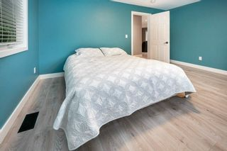 Photo 27: 24712 110 Avenue in Maple Ridge: Albion House for sale : MLS®# R2587423