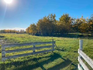 Photo 44: 450080 HWY 795: Rural Wetaskiwin County House for sale : MLS®# E4264794