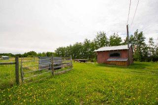 Photo 31: 5931 NORTH PINE Road in Fort St. John: Fort St. John - Rural W 100th House for sale (Fort St. John (Zone 60))  : MLS®# R2569057
