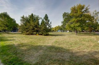 Photo 32: 2446 28 Street SE in Calgary: Southview Detached for sale : MLS®# A1146212