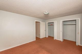 Photo 27: 48 Whitworth Way NE in Calgary: Whitehorn Detached for sale : MLS®# A1147094
