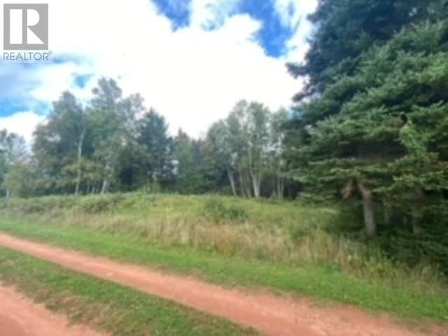 Main Photo: 0 Anne in Birch Hill: Vacant Land for sale : MLS®# 202123656