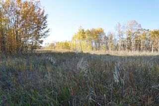 Photo 11: 14 53214 RR13: Rural Parkland County Rural Land/Vacant Lot for sale : MLS®# E4266456
