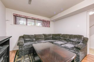 Photo 38: 262 Ryding Ave in Toronto: Junction Area Freehold for sale (Toronto W02)  : MLS®# W4544142