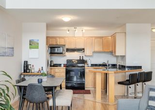 Photo 6: 305 1631 28 Avenue SW in Calgary: South Calgary Apartment for sale : MLS®# A1091835