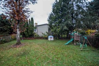 Photo 20: 22918 EAGLE Avenue in Maple Ridge: East Central House for sale : MLS®# R2121887