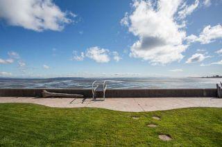Photo 6: 1584 BEACH GROVE Road in Delta: Beach Grove House for sale (Tsawwassen)  : MLS®# R2575958