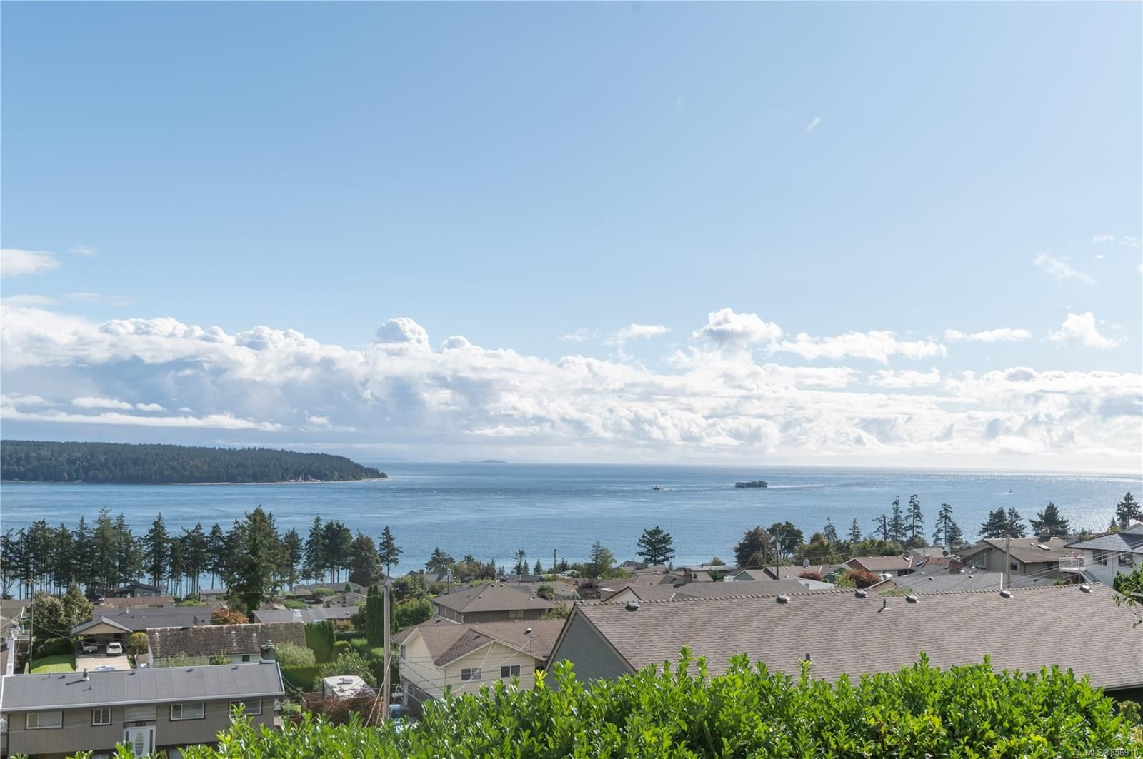 Photo 4: Photos: 215 S Alder St in : CR Campbell River Central House for sale (Campbell River)  : MLS®# 856910