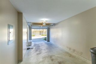 """Photo 18: 147 7938 209 Street in Langley: Willoughby Heights Townhouse for sale in """"RED MAPLE PARK"""" : MLS®# R2537088"""