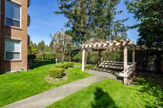 """Photo 2: 101 33731 MARSHALL Road in Abbotsford: Central Abbotsford Condo for sale in """"Stephanie Place"""" : MLS®# R2318519"""