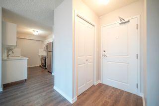 Photo 29: 705 10180 104 Street NW in Edmonton: Zone 12 Condo for sale : MLS®# E4245573
