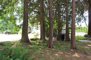 "Photo 5: 5751 NICKERSON Road in Sechelt: Sechelt District House for sale in ""WEST SECHELT"" (Sunshine Coast)  : MLS®# R2600292"