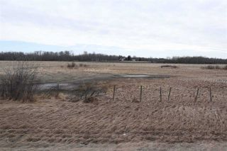Photo 4: TWP 481 HWY 795: Rural Leduc County Rural Land/Vacant Lot for sale : MLS®# E4244581