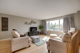 Photo 4: 48 GROVELAND Road: Sherwood Park House for sale : MLS®# E4229448
