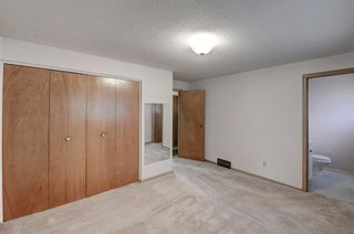 Photo 22: 2740 LIONEL Crescent SW in Calgary: Lakeview Detached for sale : MLS®# C4303561