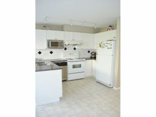 Photo 4: # 46 12110 75A AV in Surrey: West Newton Townhouse for sale : MLS®# F1428968