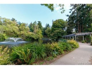 Photo 15: 252 ontario St in VICTORIA: Vi James Bay Half Duplex for sale (Victoria)  : MLS®# 736021