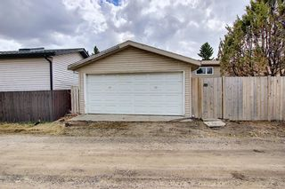 Photo 32: 80 Erin Grove Close SE in Calgary: Erin Woods Detached for sale : MLS®# A1107308