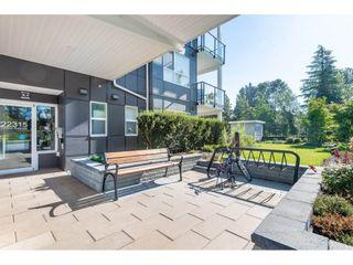 """Photo 19: 413 22315 122 Avenue in Maple Ridge: West Central Condo for sale in """"EMERSON"""" : MLS®# R2475719"""