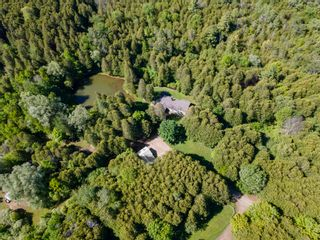 Photo 10: 4445 Concession 8 Road in Kendal: Clarington Freehold for sale (Durham)  : MLS®# E5260121