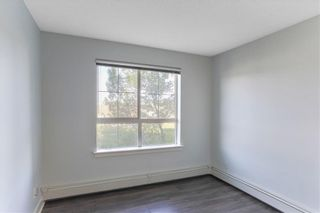 Photo 14: 315 35 RICHARD Court SW in Calgary: Lincoln Park Apartment for sale : MLS®# C4188098