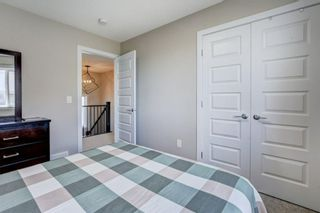 Photo 23: 179 Savanna Way NE in Calgary: Saddle Ridge Detached for sale : MLS®# A1116471