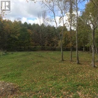 Photo 2: 16454 Highway 540 in Evansville: Agriculture for sale : MLS®# 2092616