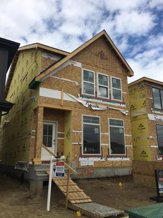 Photo 1: 2935 COUGHLAN Green in Edmonton: Zone 55 House for sale : MLS®# E4242482