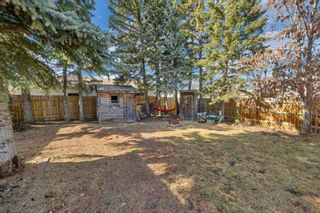 Photo 8: 5122 44 Street: Olds Detached for sale : MLS®# A1090118