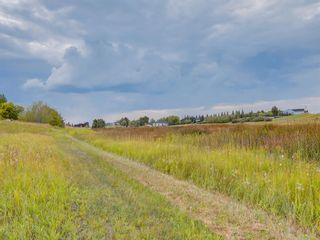 Photo 12: 14ac NORTH of DUNBOW Rd 48 Street: Rural Foothills County Residential Land for sale : MLS®# A1092764